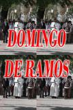 DOMINGO DE RAMOS. 2010