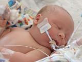Evan Daniel - 1 day old