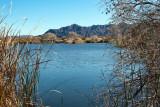 Fortuna Pond