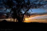 sunrise Feb 6th