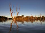 Murray River Lagoon