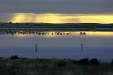 Meningie Salt Lake Sunrise