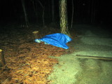 tarp for aid