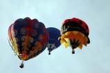 Balloons_120.JPG