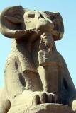 Luxor_10_140.jpg