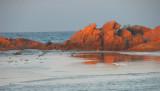 Nelaveli Beach Sri lanka