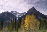 Autumn on the Icefields Parkway