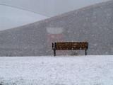More of April 18th Snowstorm