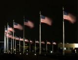 US Flags around the Washington Monument