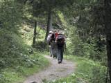 En dirección al Lago Misurina