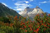 Los Cuernos de El Paine desde el Valle del Francés