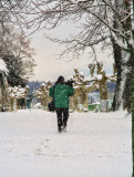 Strolling in the snow...