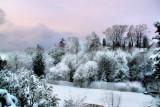 Fluffy Winter....