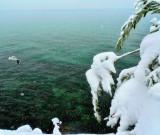 By a green winter lake...