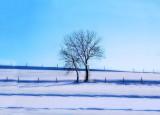 Minimalist tree....