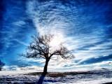 Against the sun.....
