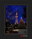 X'mas Light in Japan