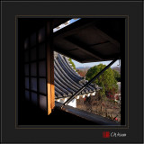 Looking out from Inuyama Castle