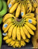 Banancitas