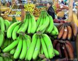 Green Bananas Red Plantains