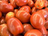 Tomatoes Bending Light