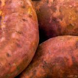 Extra Sweet Potatoes