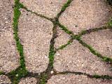 Sidewalk Runes