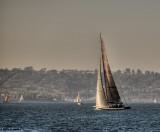 sailboat on san diego bay