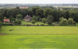 2008-08-11_245.jpg