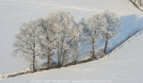 2009-01-10_312.jpg