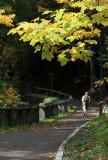kwt_2008-10-01_023.jpg