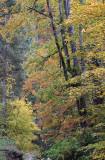 kwt_2008-10-01_198.jpg