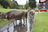 kwt_2008-10-03_106.jpg