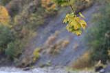 kwt_2008-10-03_135.jpg