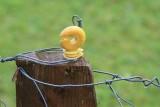 kwt_2008-10-03_166.jpg