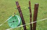 kwt_2008-10-03_178.jpg