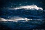 The Angry Sea - 2