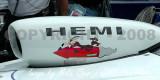 7-SMP-MG-2295-06-29-08.jpg