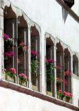 fenêtres gothiques et géraniums