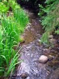 le petit ruisseau sympa