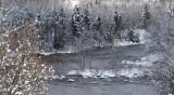 la rivière à l'eau noire