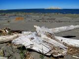 plage de débris