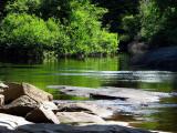 l'eau verte