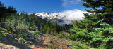 Old Snowy Panorama
