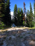 Rare open campsite, off trail above Coleman Weedpatch