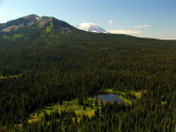 Mt Adams, meadow and lake