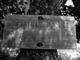 Vintage PCT trail sign 2008, Cispus Pass, over 30yrs old