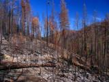 Elk Creek Fire 10-1-2008