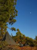 My November full moon camp