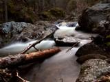 Kelsey Creek  narrows